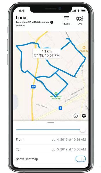 location history GPS tracker Katze